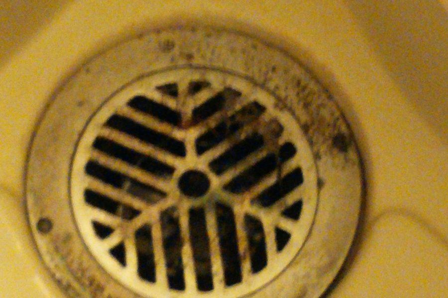 浴室詰まり排水溝の写真